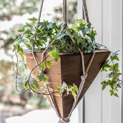 These DIY Hanging Planters are so Cheap They Will Blow Your Mind!