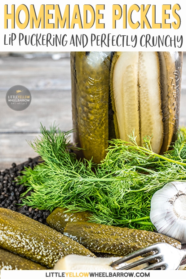 Homemade dill pickles that stay crunchy after processing and have the perfect lip puckering kick that a good dill pickle should have. We have a secret ingredient that keeps those garlic dills crisp for up to a year. Say no to soggy homemade pickles!