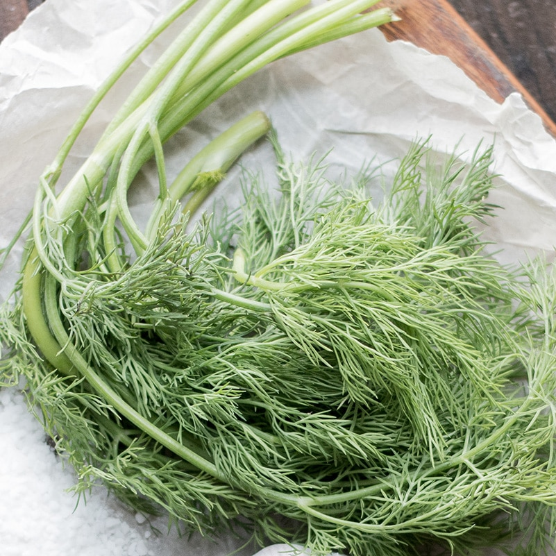 sprigs of fresh dill