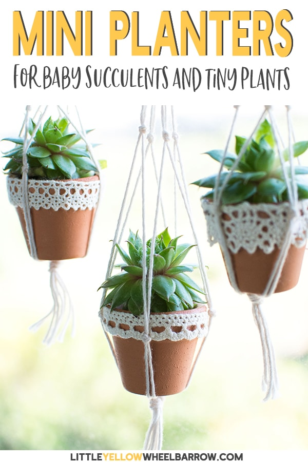 Christmas Succulent Planters.Mini Succulent Pots You Can Make In A Snap