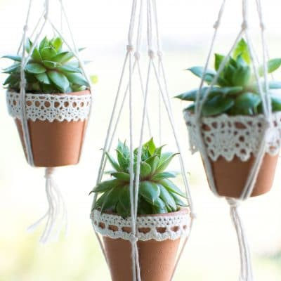 Mini Succulent Pots you can Make in a Snap