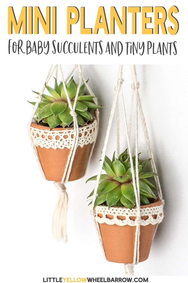 These mini succulent pots are a cute way to display your tiny plants. This DIY craft project is quick and easy and creates the most adorable hanging planter ever. They also make adorable Christmas tree ornaments! Perfect for the gardener, or someone who just loves succulents. #minipots #succuletplanter #succulentpots #diychristmasornaments #diychristmas #craftideas #easycrafts #christmascrafts