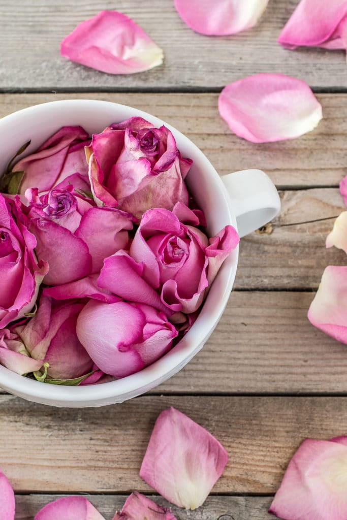 Pink rose buds in a white mug with fresh pink rose petals scattered over a rustic wooden table