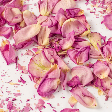 How to Dry Rose Petals In Under Two Minutes