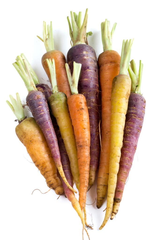 Colorful carrots freshly pulled from the garden with tops snipped, on a bright white background.