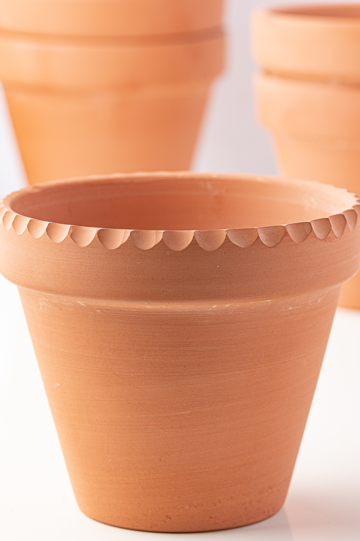 A terracotta pot with an engraved scalloped edge around the rim against a bright white background