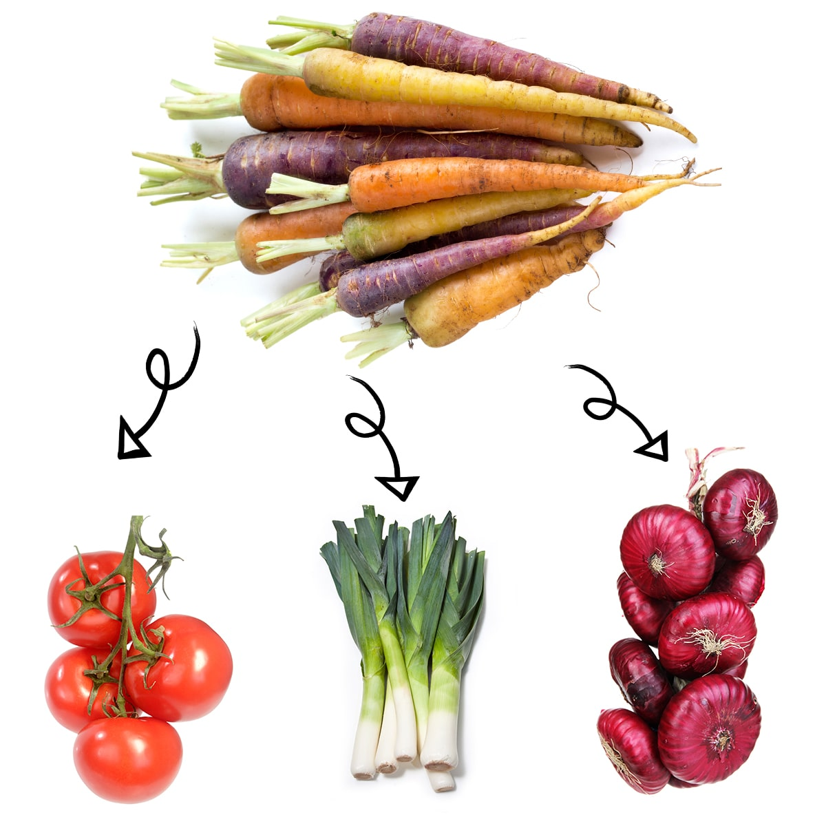 Bright white graphic of a bundle of carrots with arrows linking it to a fresh ripe tomatoes on the vine, stalks of leeks, and a bundle of red onions.