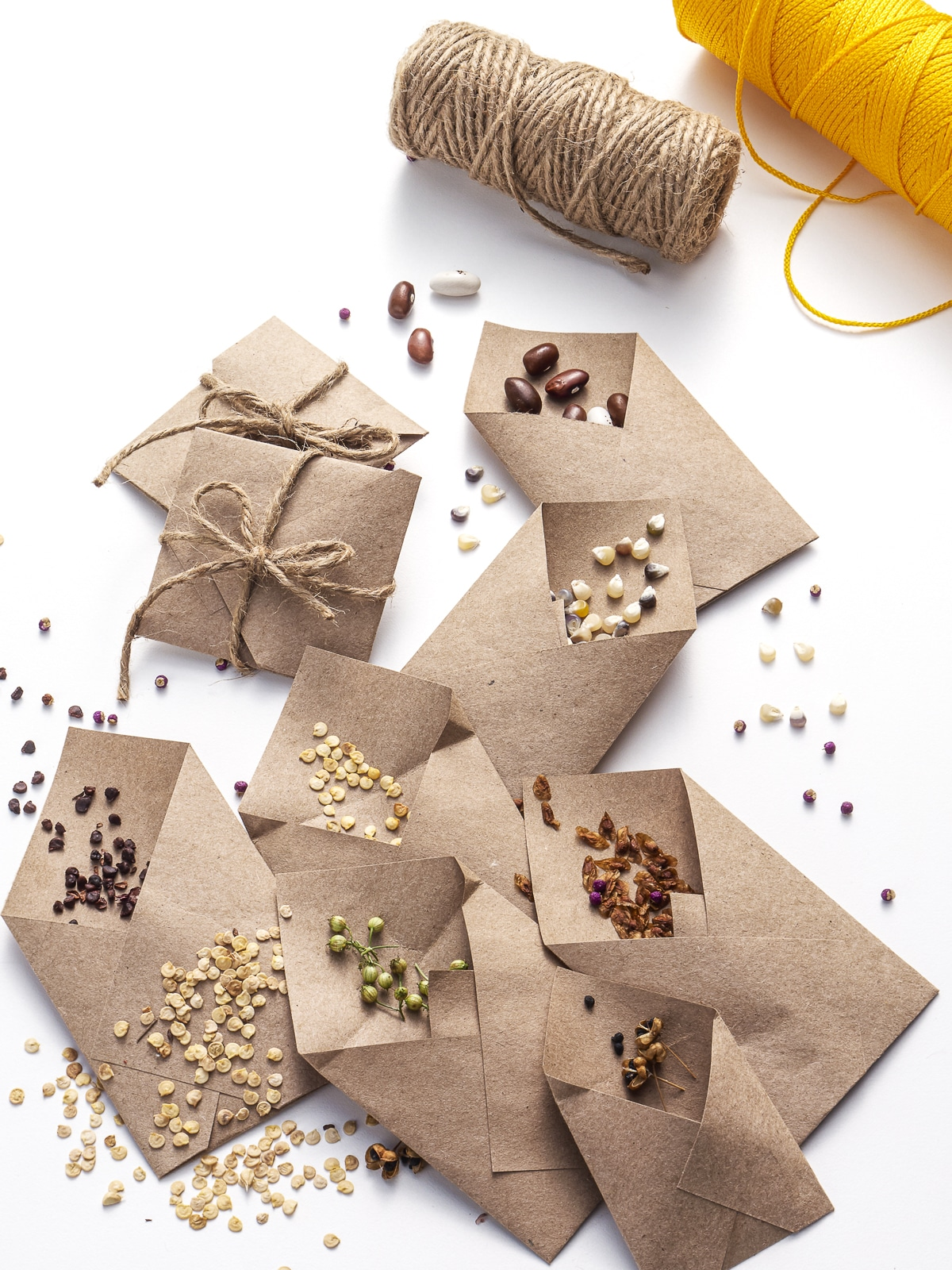 Kraft colored seed packets open on a bright white table with seeds scattered all around.