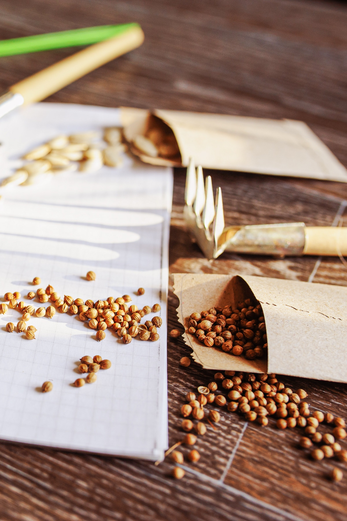 A rustic wooden table with kraft colored seeds packets spilling seeds onto a white notebook
