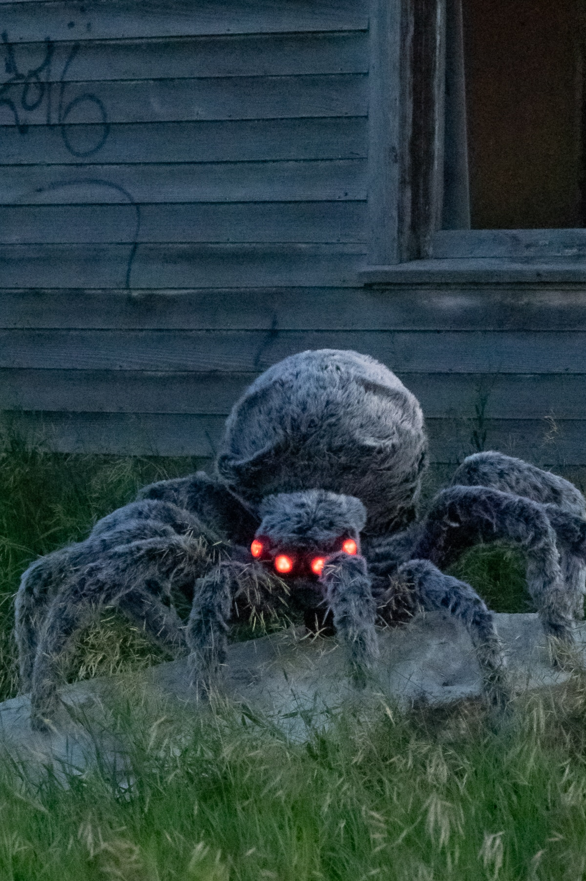 A giant spider with glowing eyes hanging out in front of a an old abandoned house at twilight.