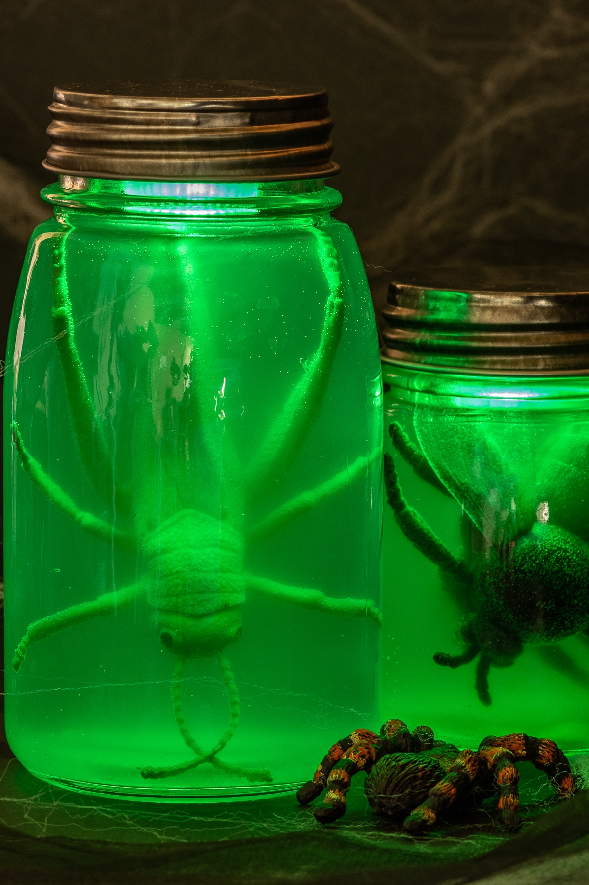 Two halloween specimen jars filled with a plastic giant fly and large fake grasshopper. The jars are glowing an eerie murky green color.