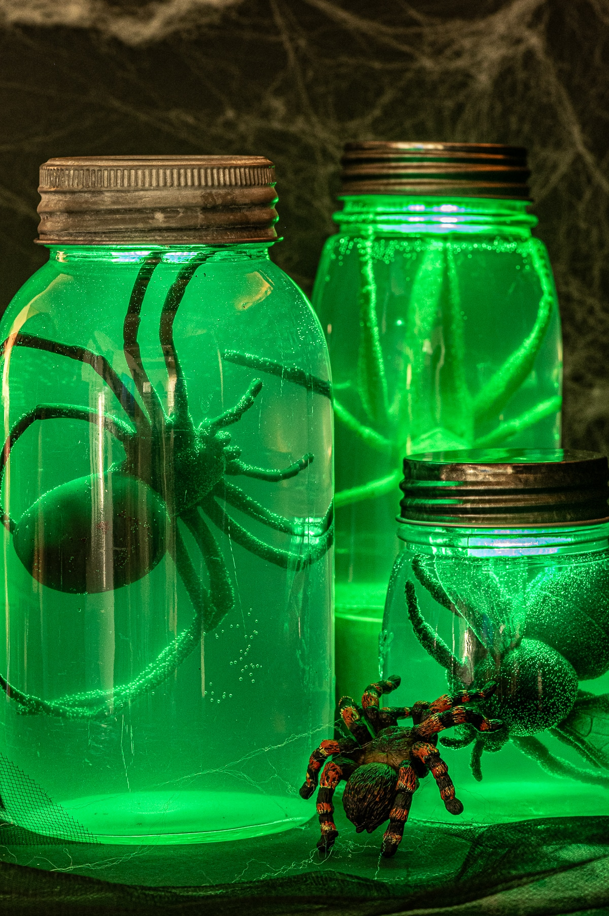 Three green glowing jars filled with large bugs against a black background with spiderwebs.