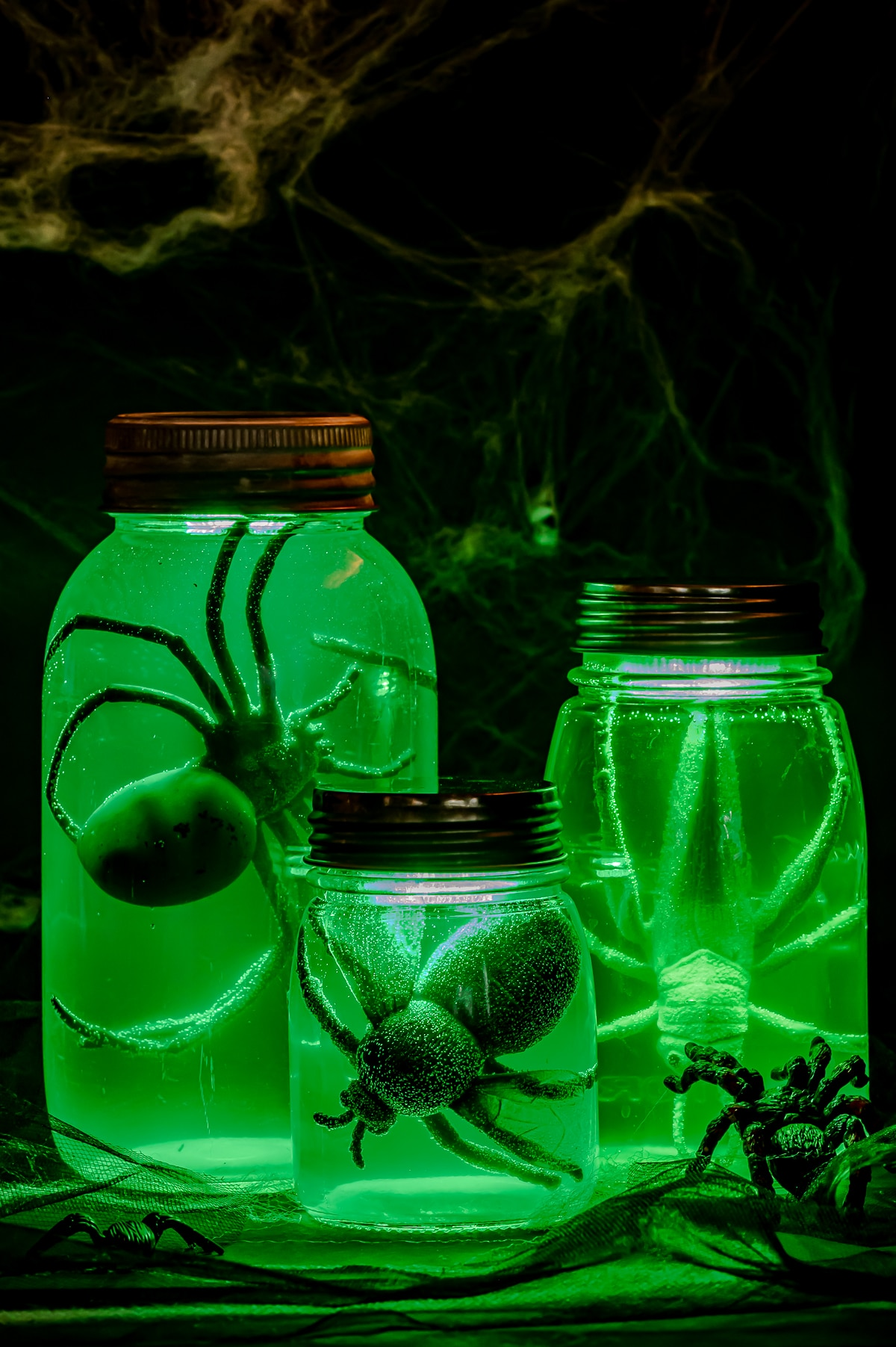 Three halloween specimen jars filled with a plastic giant fly and large fake grasshopper. The jars are glowing an eerie murky green color.