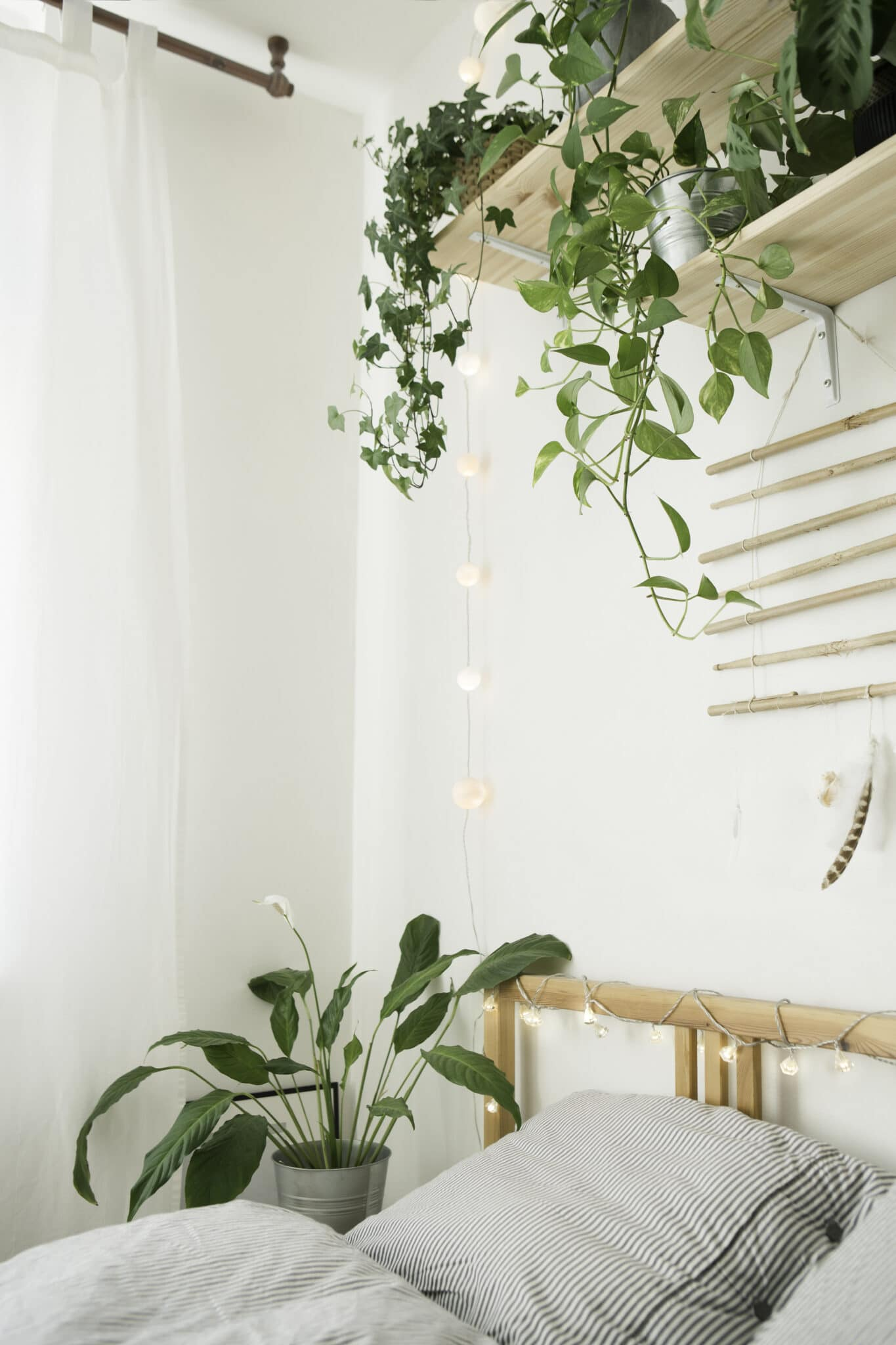 A bedroom with indoor plants to clean the air.
