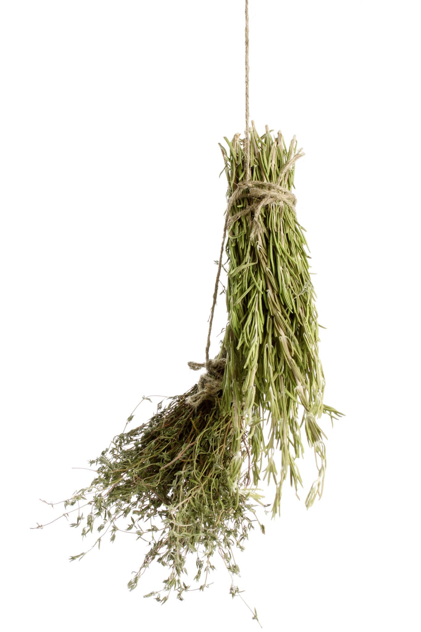 dried herbs, isolated on white