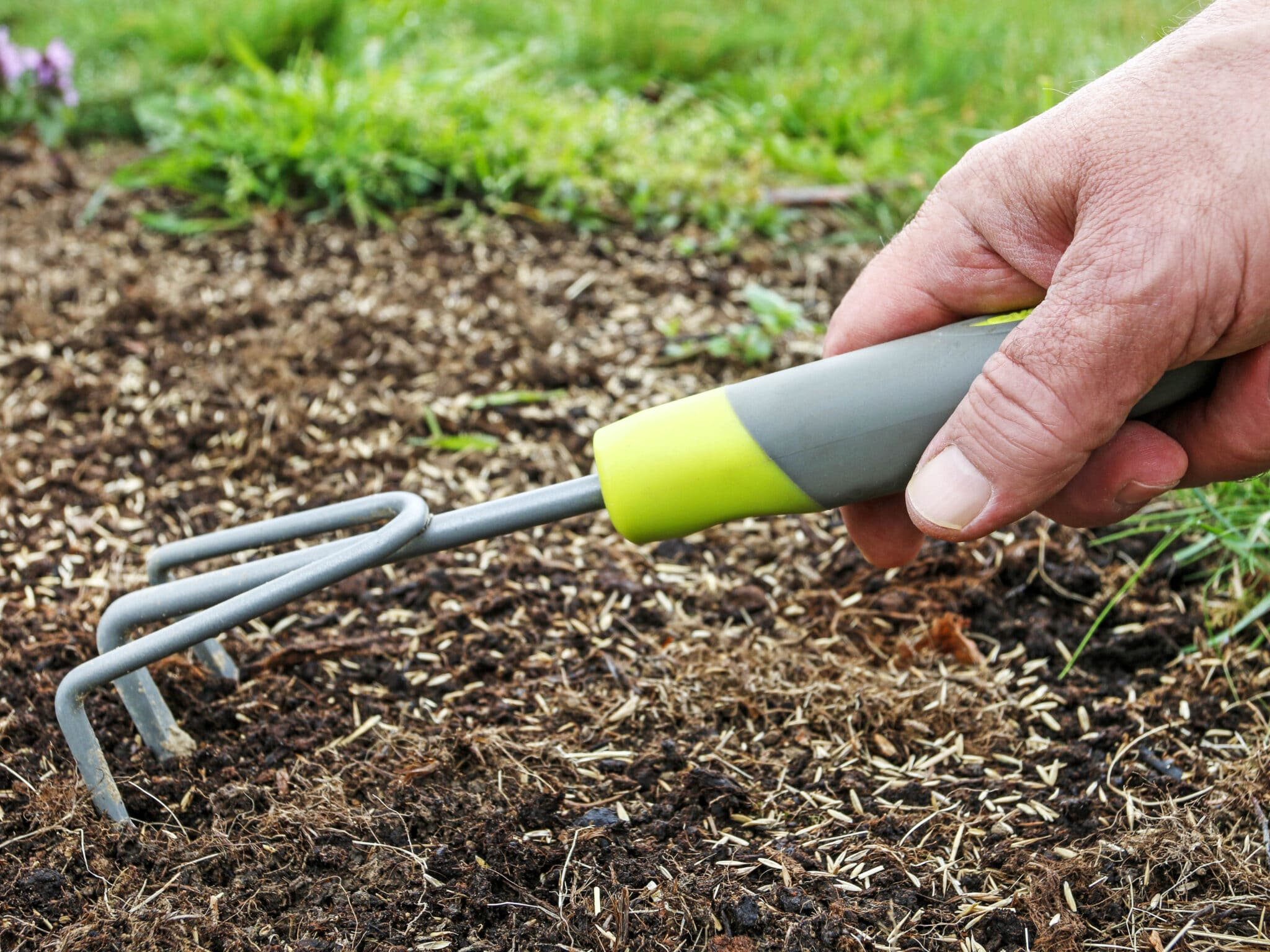 A gardening fork being pulled across soil.