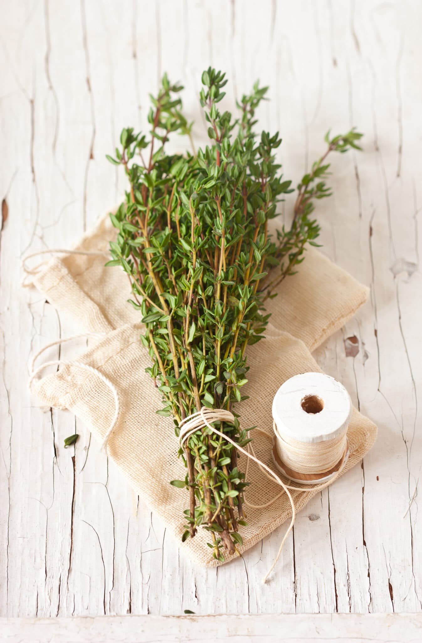 Bunch fresh thyme on an old wooden board tied with rustic string.