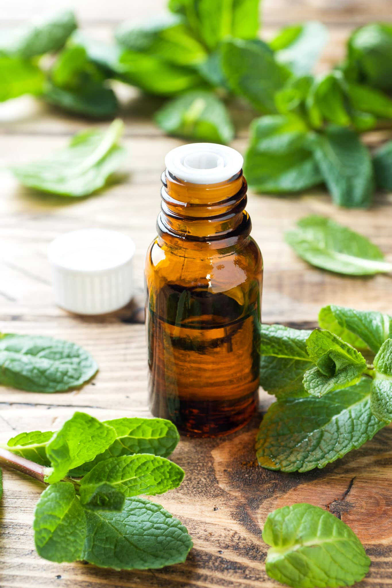 A small brown bottle filled with mint oil surrounded by sprigs of fresh mint all resting on a rustic wooden table top.