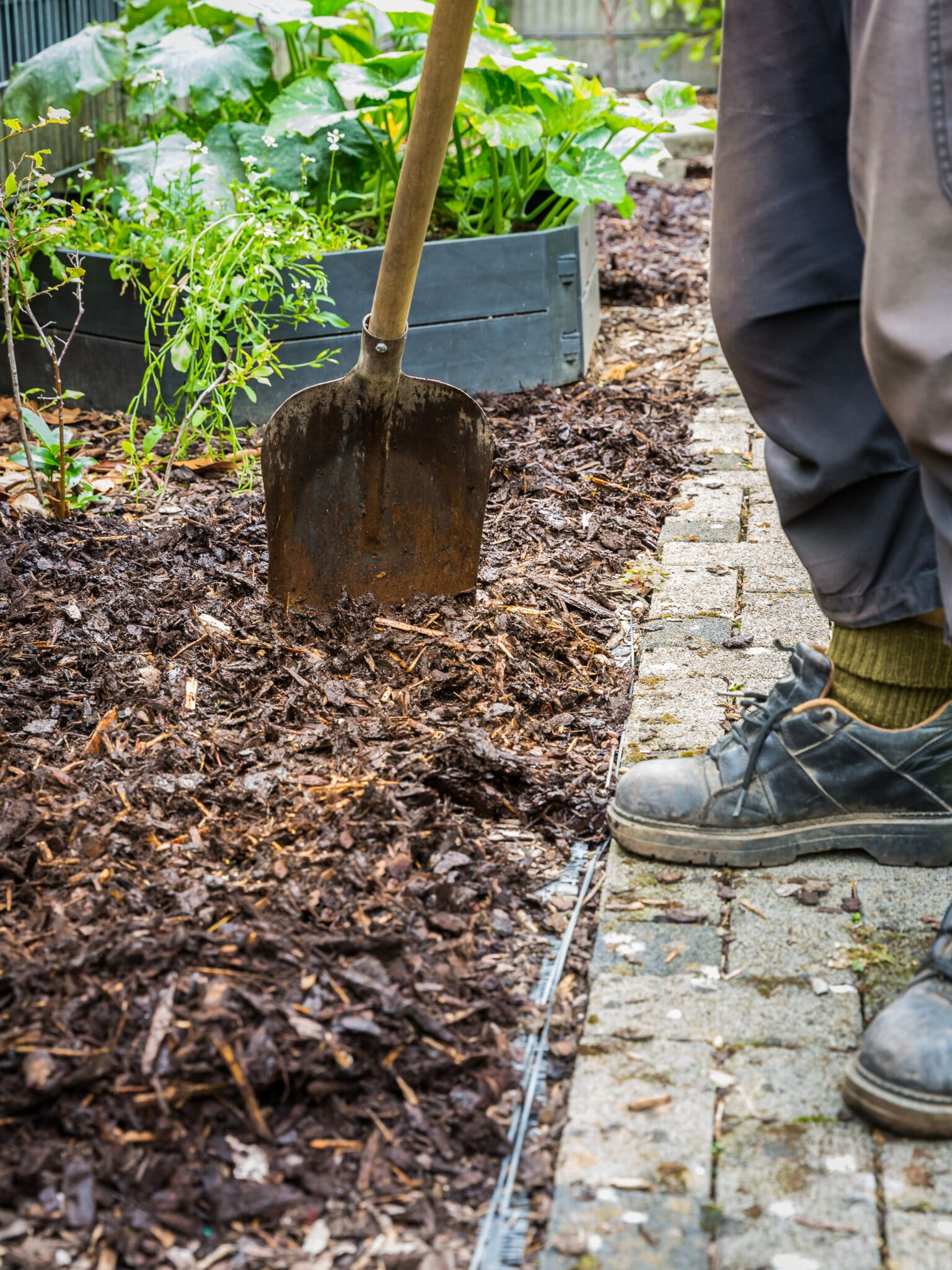 A gardener spreading mulch for spring gardening prep.