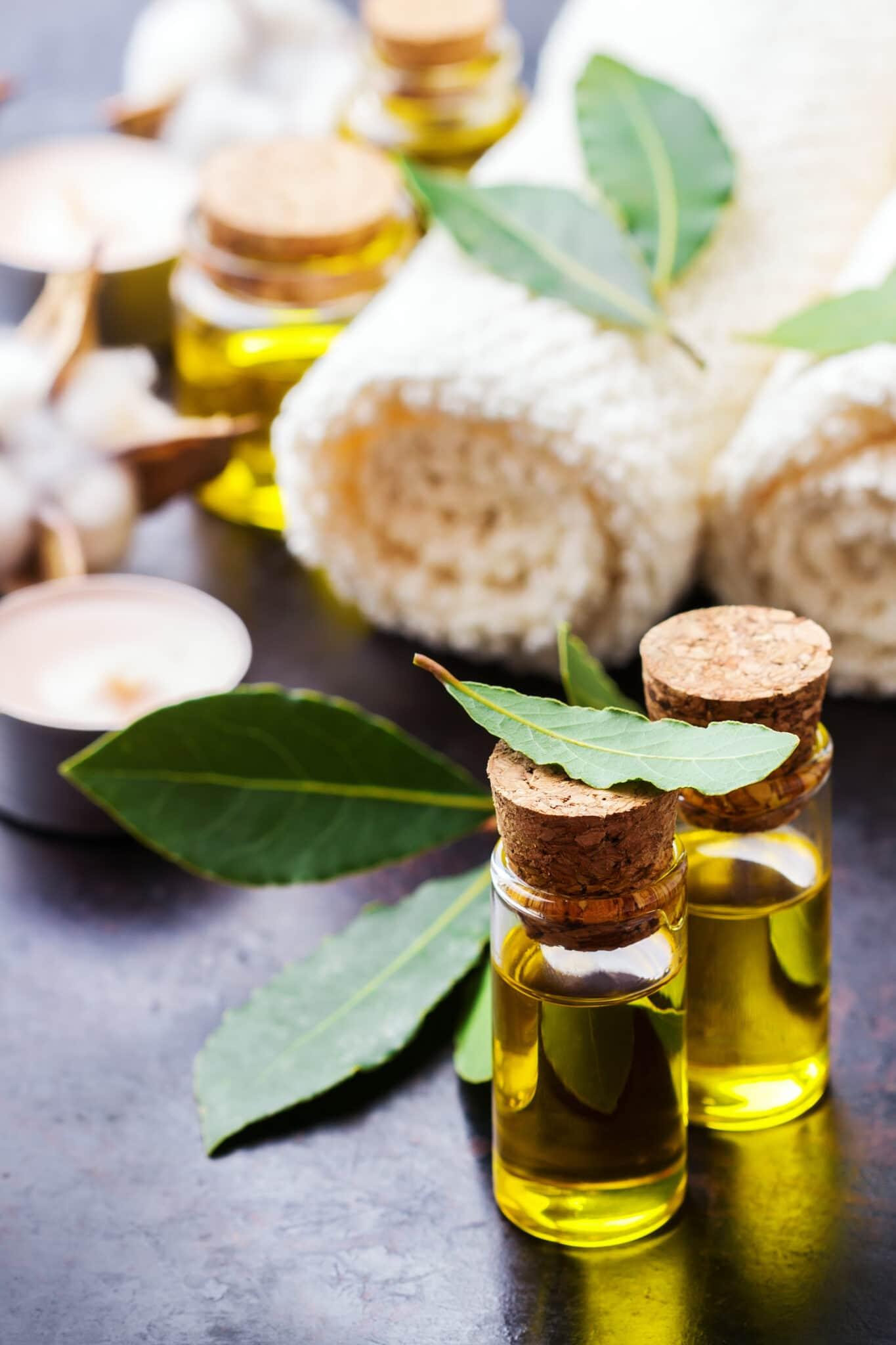 Gesundes Lebensstilkonzept.  Natürliches ätherisches Lorbeeröl, Essenz in Glasflasche mit Blättern auf einem rostigen schwarzen Tisch für Schönheit, Spa, Therapie