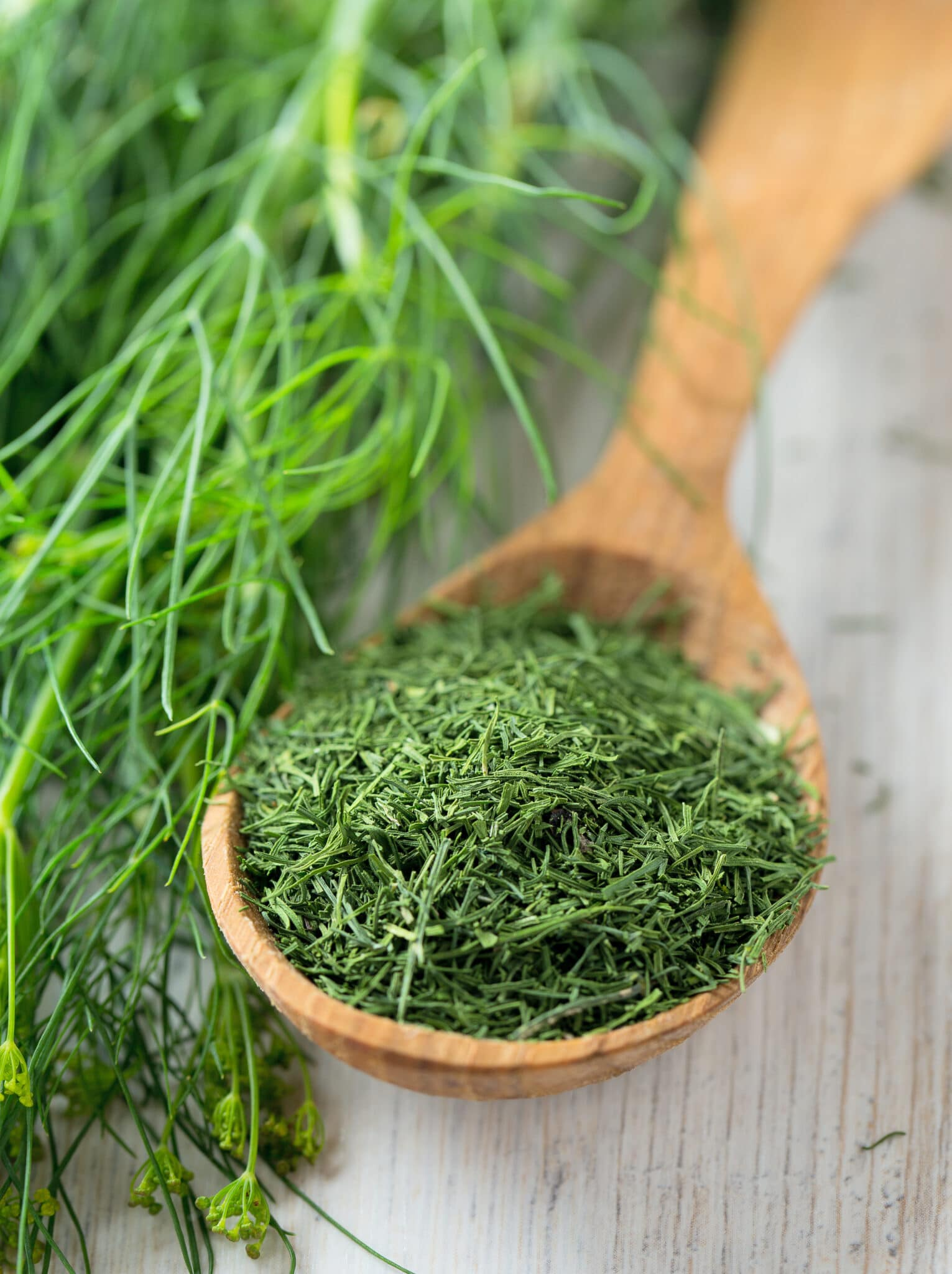 dried dill in a wooden spoon