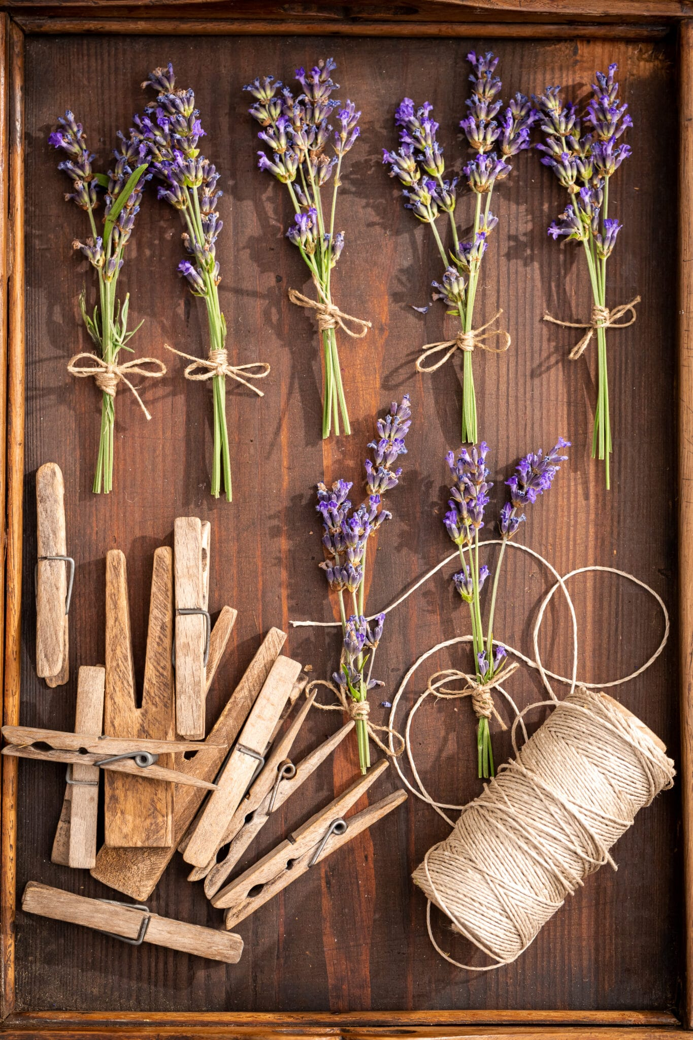 A tray filled with small sisal rope tied bundles of lavender ready to dry.