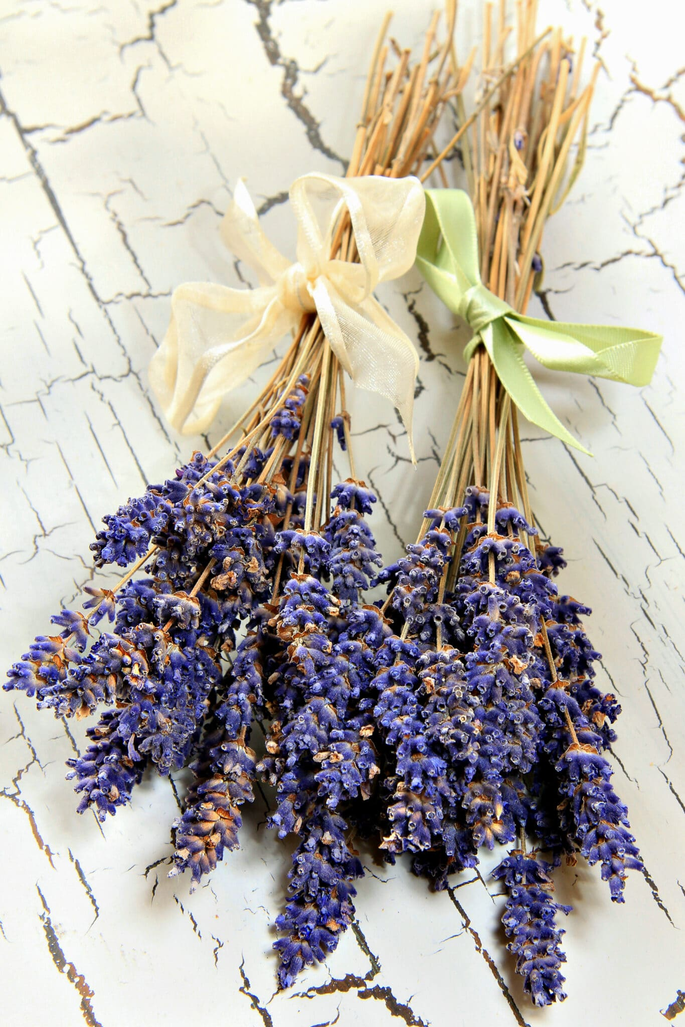 Dried lavender bunches on a rustic white table top.