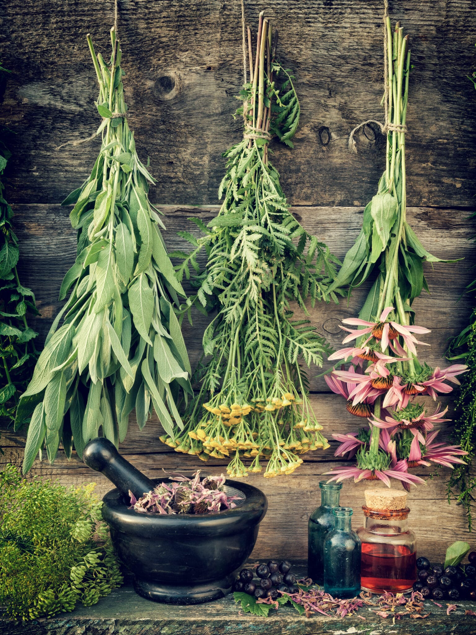 Rustic wooden wall and table with fresh herbs from the garden hanging with twine.  Below there  are jars and bowls.