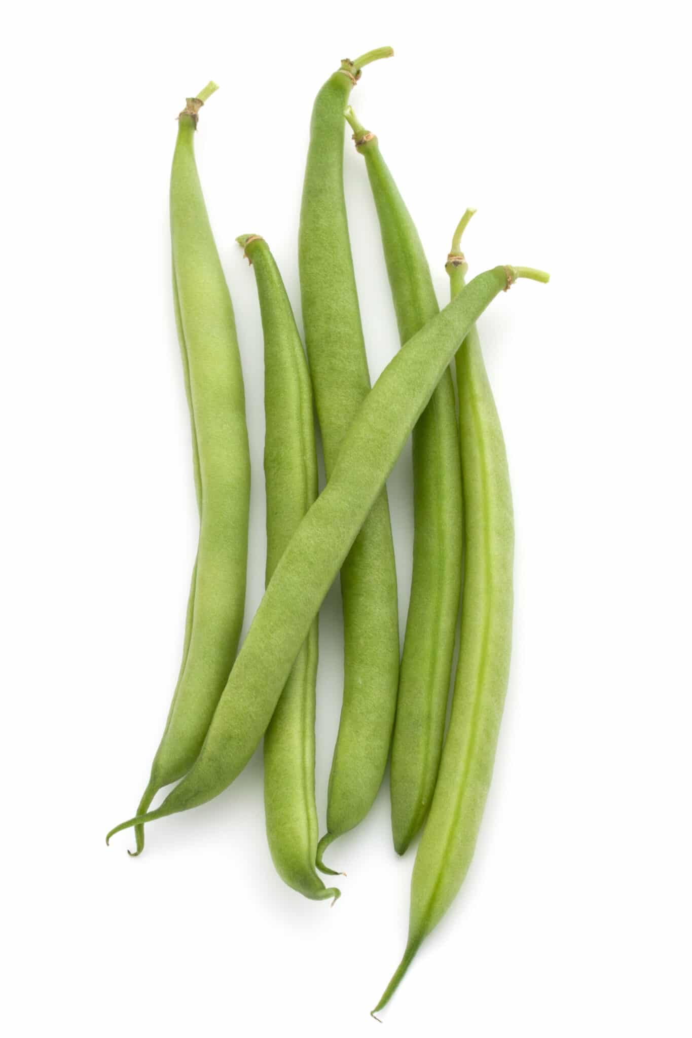 Plump ripe green beans against a bright white background.